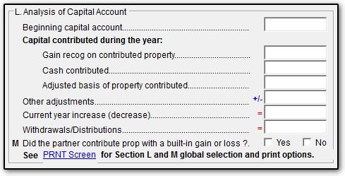 13240 1065 return does not balance capital account