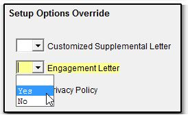 to generate an engagement letter in view mode of each return on a global basis from the home screen of drake choose setup options optional documents
