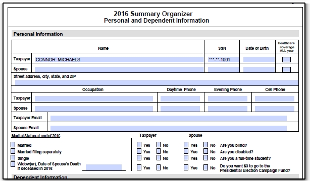 organizers proformas fillable pdfs