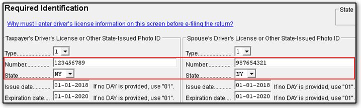 decoding michigan drivers license numbers
